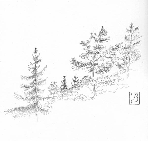 Treetops I.