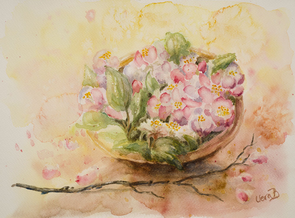 "Apple blossoms in a bowl. 22x30 cm (8,8x12"") on Sennelier 300gsm 2015. 175€"