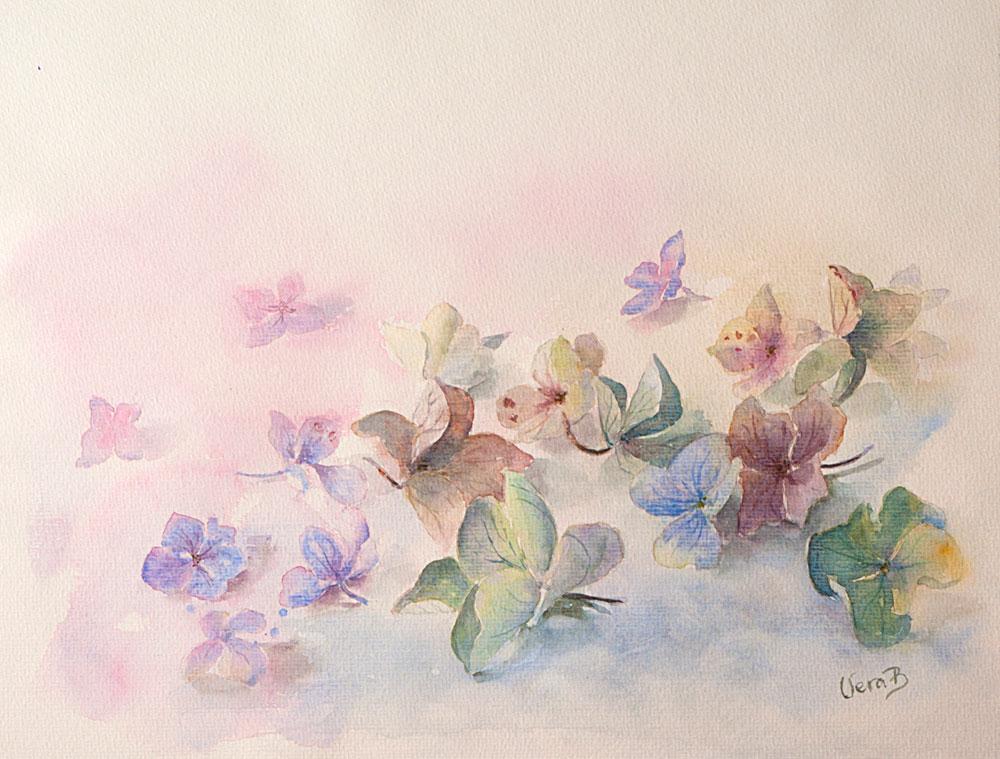 "Hortensia flowers (Hydrangea). 31x42 cm (12,4x16,8"") on Hahnemühle 300gsm 2016. 350€"