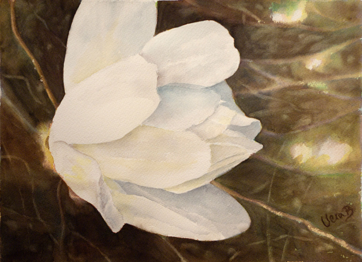 "Magnolia portrait. Painted with a limited primary colour palette. 22x30 cm (8,8x12"") on Arches Not 300gsm 2016. In juried Danish show. 175€"