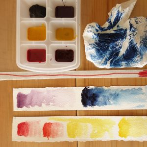 Making plant pigment watercolour