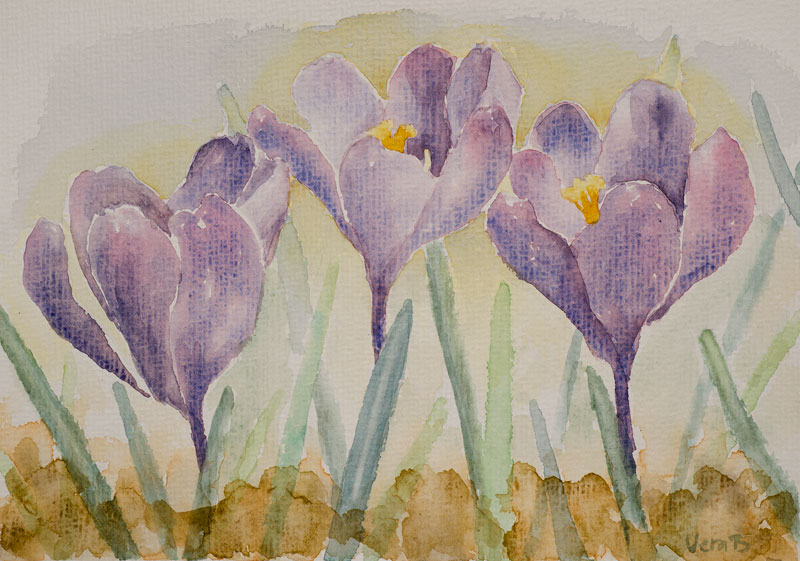 "Purple crocuses. 23x26 cm (9,2x10,4"") on Hahnemühle 300gsm. 2015. 220€"