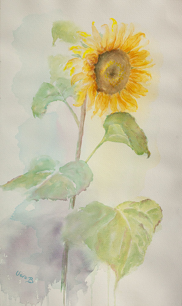 "Sunflower. 62x35 cm (24,8x14"") on Arches Not 300gsm 2016. 535€"