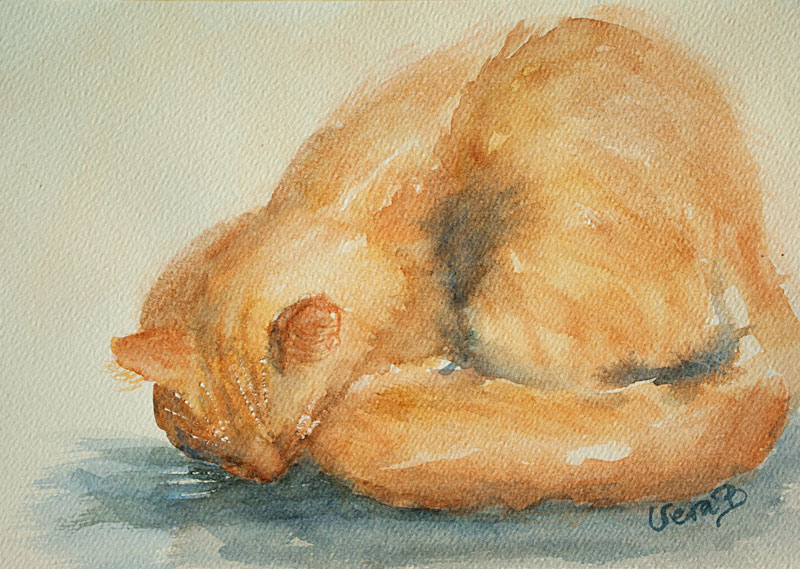 Tiger the cat, quick painting. Approx 30x20 cm. Private