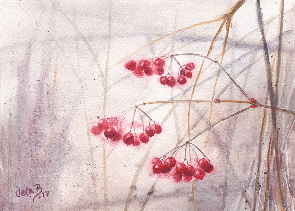 "Viburnum berries. Painted with homemade paints, partly plant pigments. 25x35 cm (10x14"") on Arches rough 300gsm 2017. 228€"
