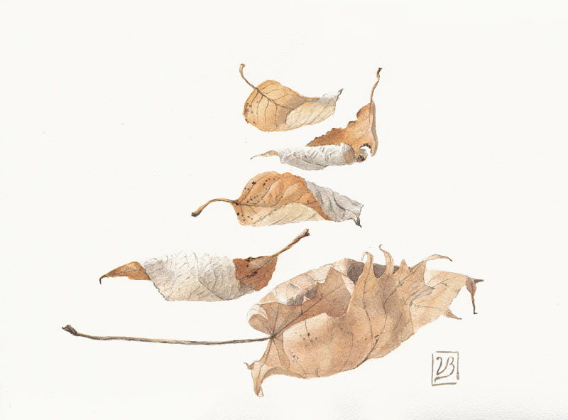 "Dancing dry leaves. 28x37 cm (11,2x14,8"") on Bockingford paper 2018. In juried Danish show. 230€"