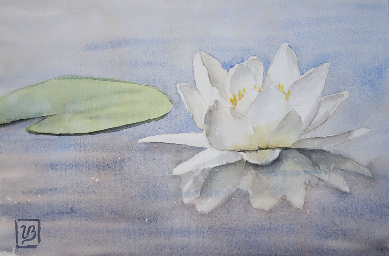 "A water lily. 27x18 cm (7,2x10,8"") on Arches fine grain. 130€"