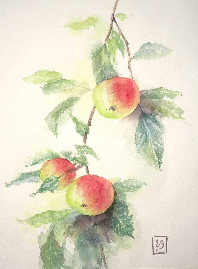 "Apple time. 36x27 cm (14,4x10,8"") Arches rough 2018. 225€"