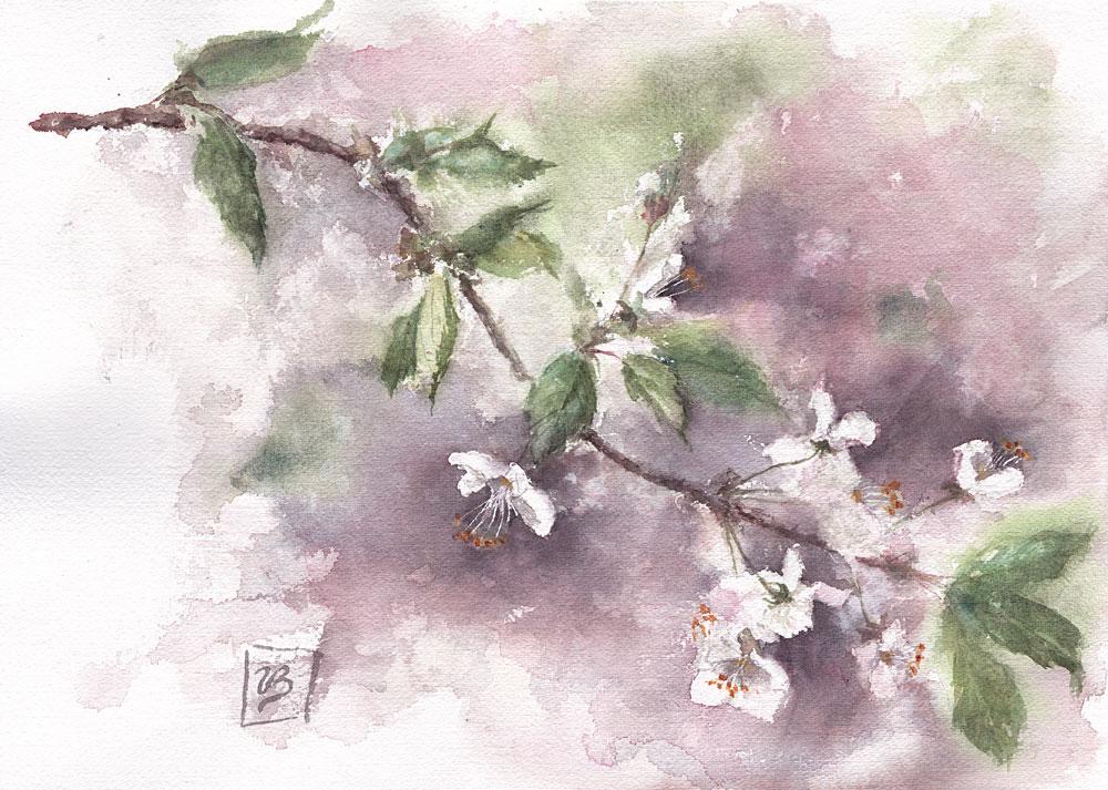 "Sakura. Cherry blossoms in japanese, 26x36 cm (10,2x14,2"") on handmade Santoni paper, 2019."
